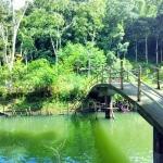 Hutan Bambu dan Wisata Air Andeman di Turen Malang