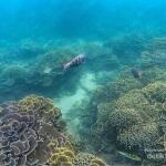 10 Spot Wisata Malang Instagramable Untuk Traveler Muda