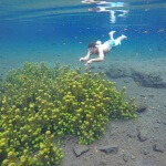 Wisata Air Sumber Sira Malang, Foto Bawah Air yang Mengagumkan