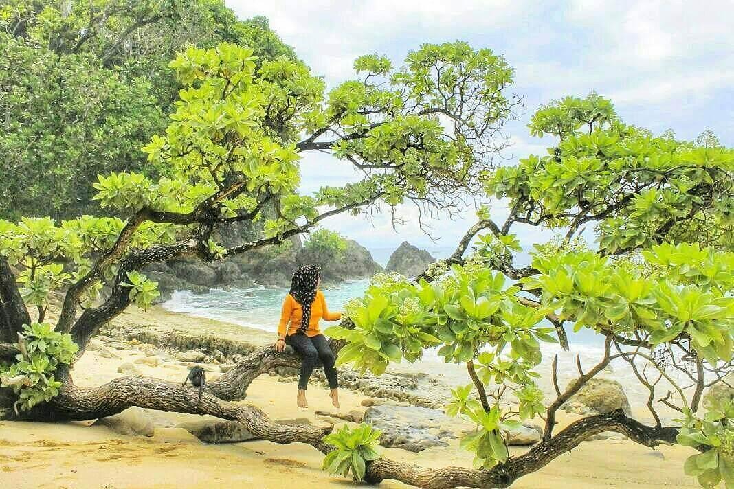 Pantai Seling Ombo Malang