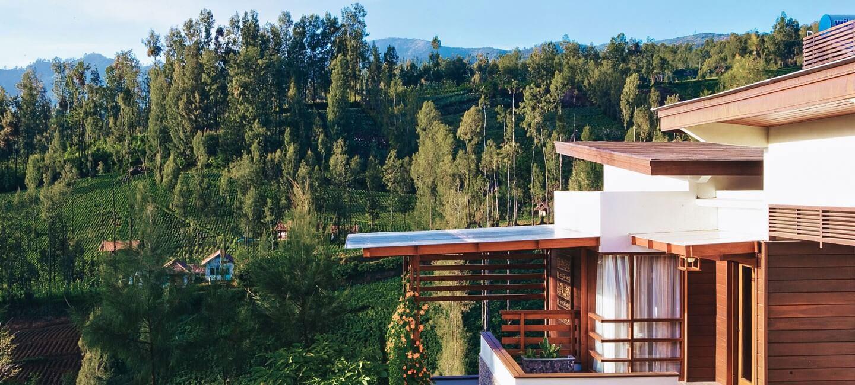 Pemandangan dari kamar Jiwa Jawa