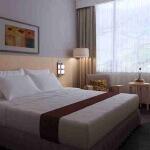malang_room_deluxe_horison_hotel_malang