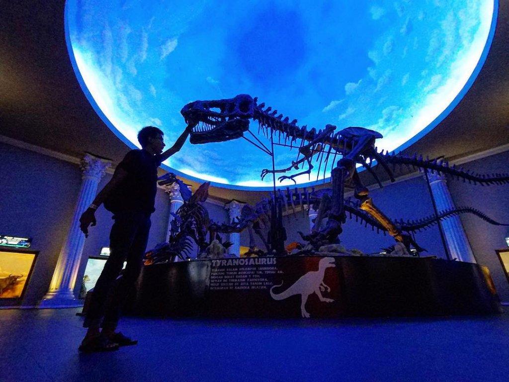 Batu Secret Zoo, Museum Satwa