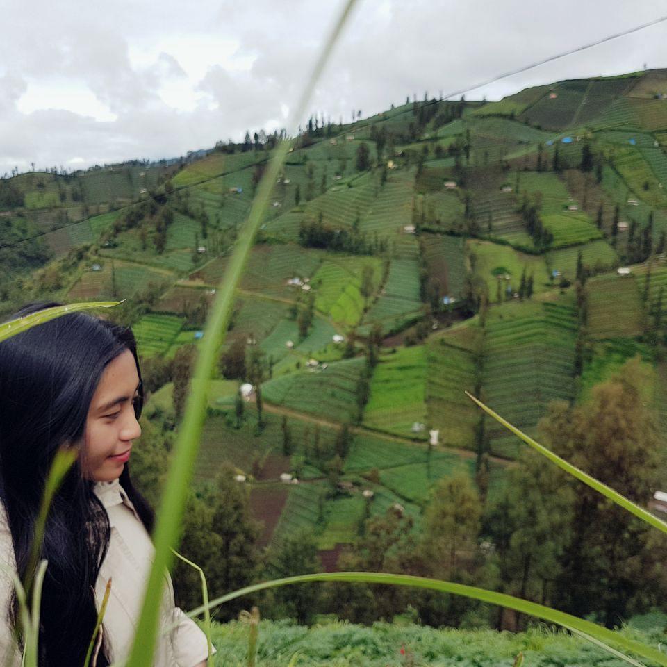 Desa Wisata Ngadas