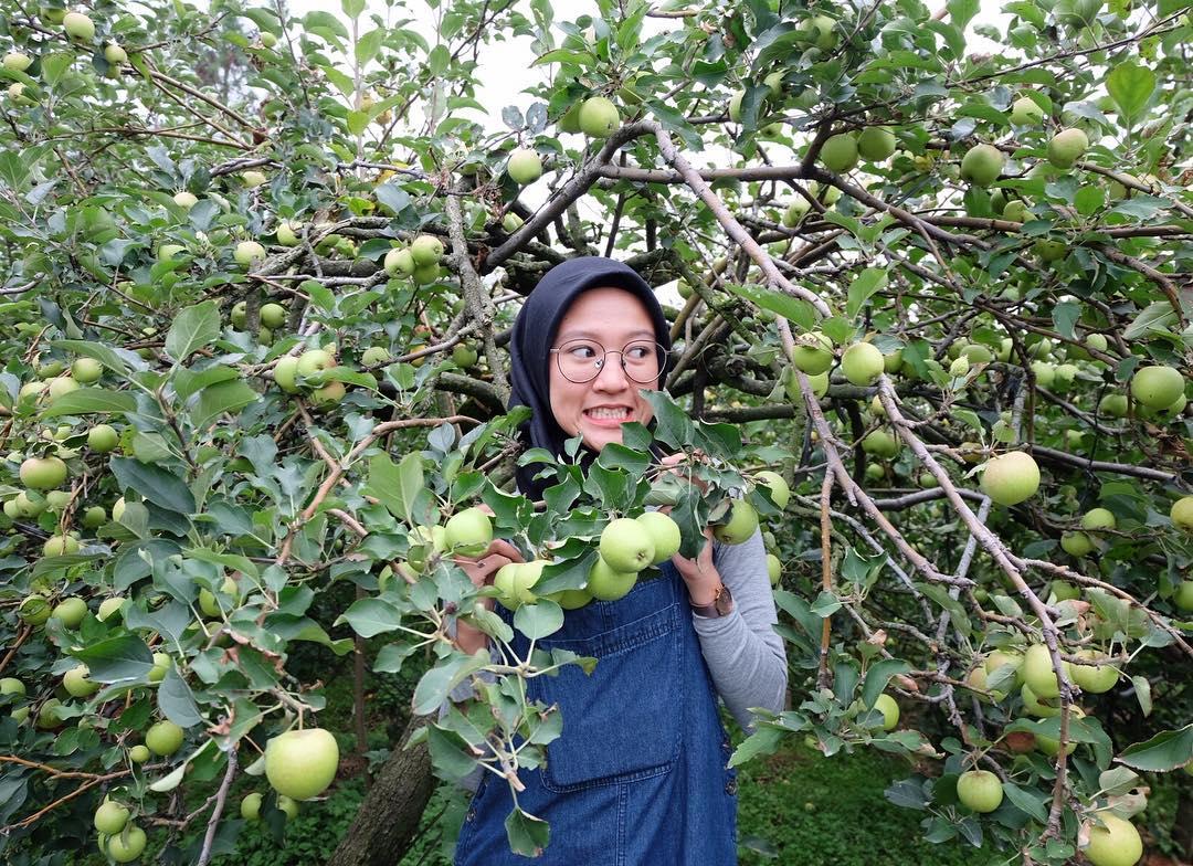 Wisata Petik Apel Selecta