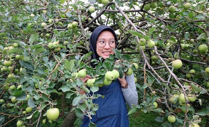 Wisata agro di Malang