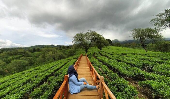 Bukit Cantik di Malang