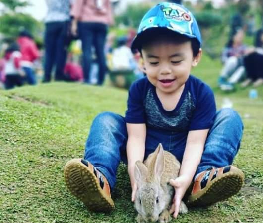 taman kelinci malang_min