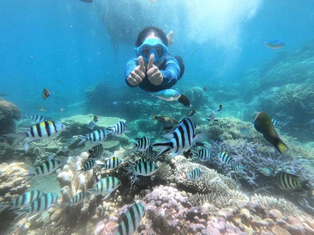 snorkeling paket wisata karimunjawa